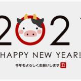 新年あけましておめでとうございます!2021年の予定と目標!